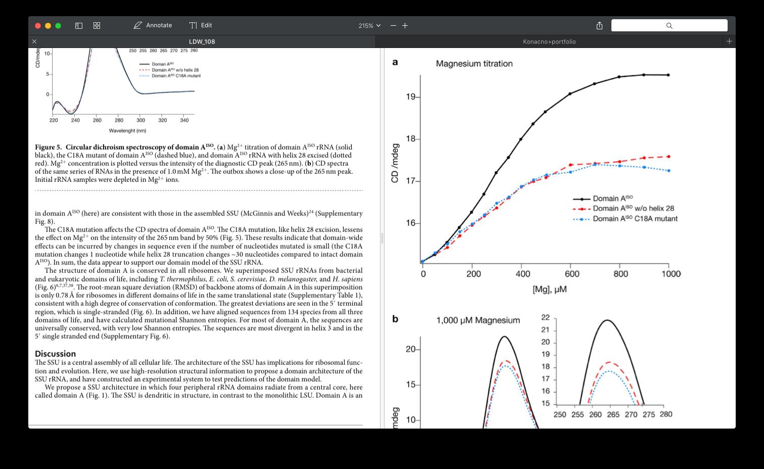 Split view PDF